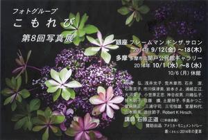 Komorebi8th_2014.JPG