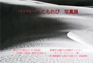 20111126-1130_komorebi.jpg